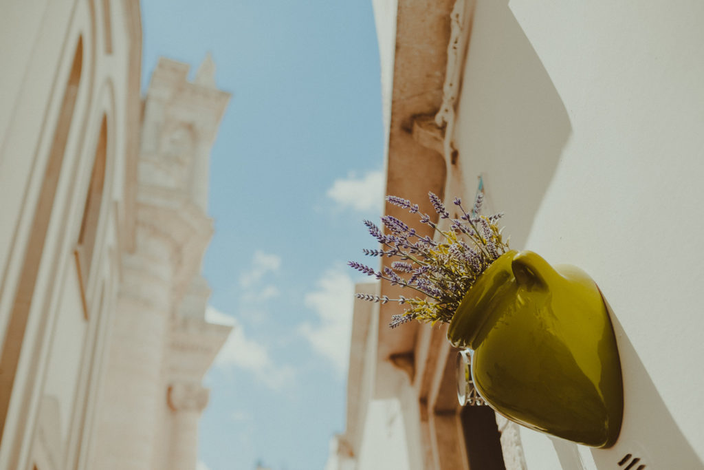 Kwiaty na murze
