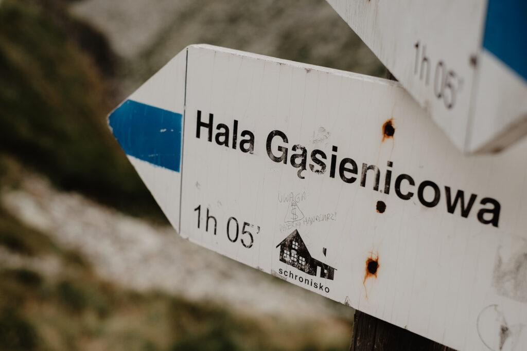 """Oznaczenie szlaku. Hala Gąsienicowa - 1h 05"""""""