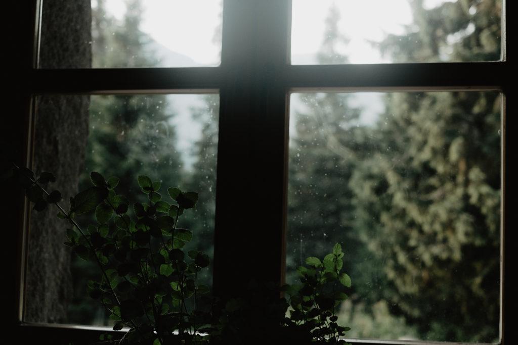 Widok z okna Murowańca.